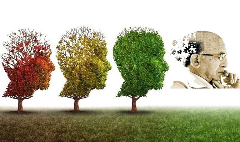 Confira Como Reduzir o Risco da Doença de Alzheimer em 50%!