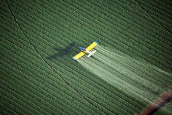 Agrotóxicos No Brasil: Conheça os riscos para a saúde de morar nesse país