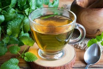 Erva-cidreira: 10 benefícios para a saúde e como fazer o chá