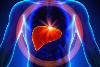 Para que serve o Fígado e onde se localiza