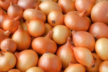 Você sabe que cebolas fazem bem pra saúde, mas não imagina o quão poderosas elas são