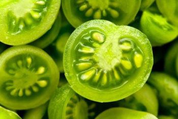 Conheça os poderes milagrosos do tomate verde para quem sofre com varizes